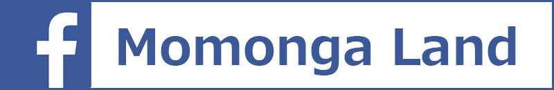 フクロモモンガ facebook